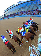 Arkansas Democrat-Gazette/BENJAMIN KRAIN --01/15/11--<br /> Horses jump from the starting gate of the 7th race at Oaklawn Park Saturday during opening day in Hot Springs.