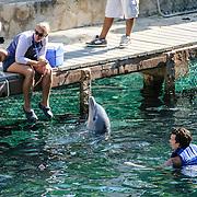 Visitors swim with dolphins at Xcarat Maya theme park south of Cancun and Playa del Carmen on Mexico's Yucatana Peninsula.