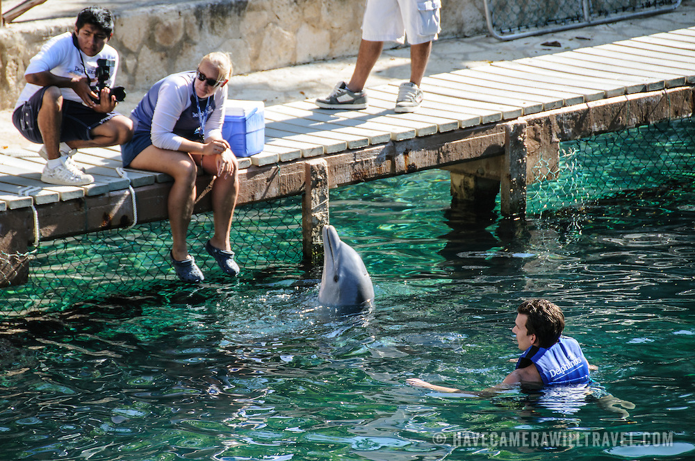 Visitors swim with dolphins at Xcarat Maya theme park south of Cancun and Playa del Carmen on Mexico's Yucatana Peninsula.