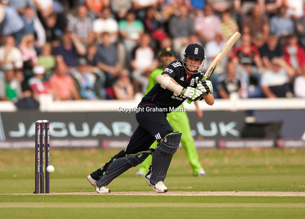 Steven Davies bats during the first T20 international between England and Pakistan in Cardiff.  Photo: Graham Morris (Tel: +44(0)20 8969 4192 Email: sales@cricketpix.com) 05/09/10