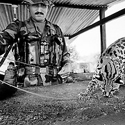 A FARC rebel fighter and his mascoy; a wildcat, at a checkpoint in Caqueta.<br />
