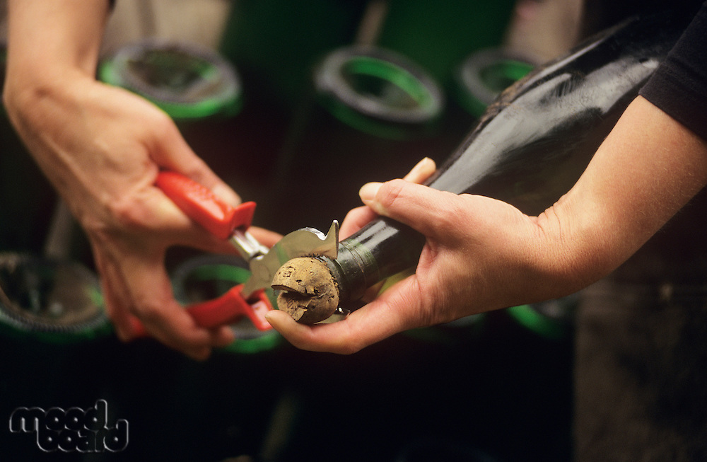 Disgorging Champagne Victoria Australia