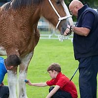 Perth Show…06.08.16<br />