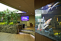 Koi fish swim inside the 2,200 gallon aquarium that is one of the newest aesthetic attractions in the remodeled lobby of The Coeur d'Alene Resort.