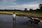 A farmer working in his rice field at sunrise in Srae Sronok, one of the villages along the Srepok river that will be flooded by the dam's reservoir. The villagers were offered two options: either accept $6000 per family and re-build a house by themselves or move into a small concrete house with a tin roof and 5 hectares of land to farm. Like many other promises though, no official document has yet been provided.