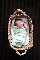 11/18/2010 Addelyn Elizabeth - 10 days old. photos © Laura Mueller 2010