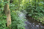 Fluss Selke bei Falkenstein, Selketal, Harz, Sachsen-Anhalt, Deutschland | river Selke near Falkenstein, Selke valley, Harz, Saxony-Anhalt, Germany