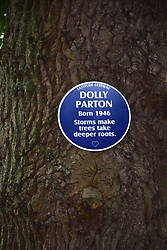 Latitude Festival 2017, Henham Park, Suffolk, UK. Blue plaques dotted around the Faraway Forest - this one for Dolly Parton