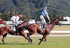 Wellington-Racing, Telegraph Stakes