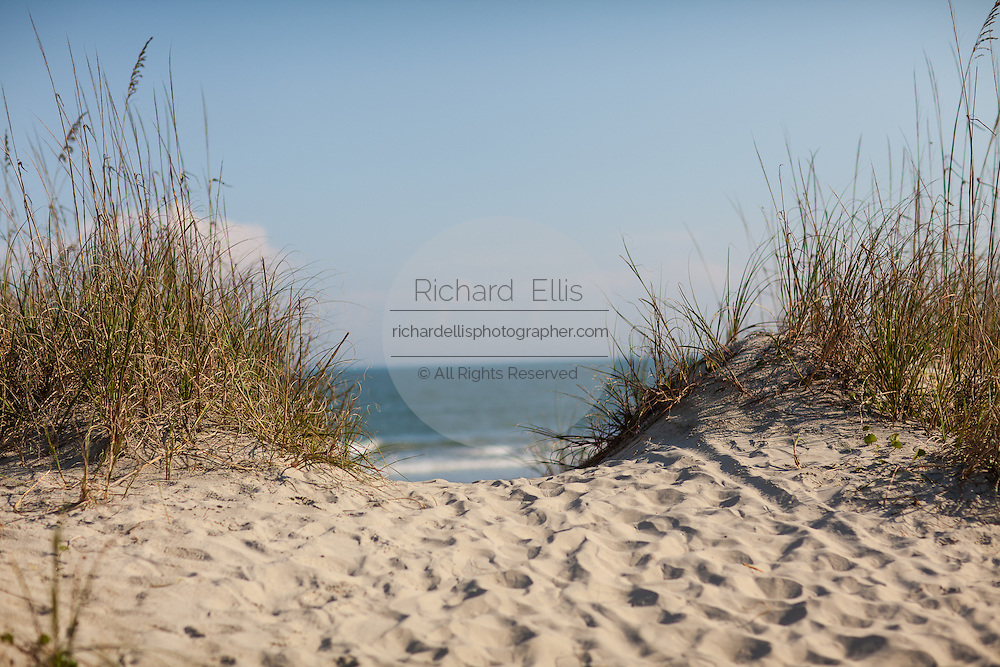 Sand pathway to the beach on Sullivan's Island, SC.