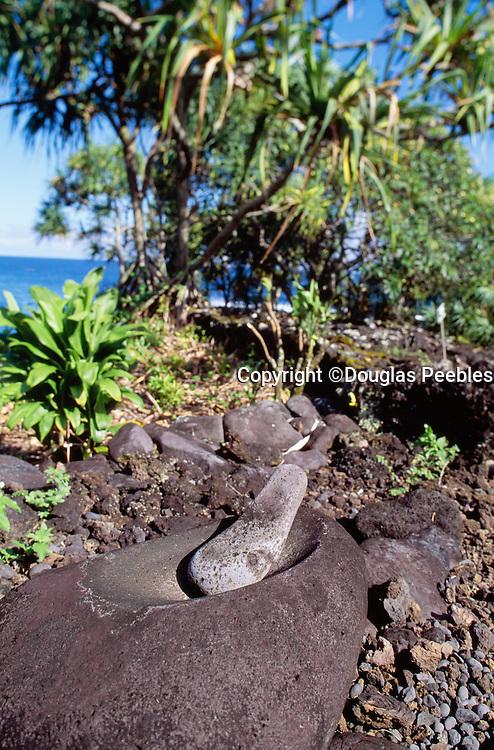 Poi Pounder, Kahanu Gardens, Hana Coast, Maui, Hawaii