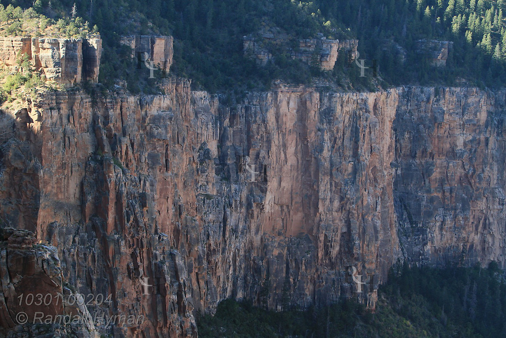 View from South Kaibab Trail of sheer walls of Coconino Sandstone below South Rim; Grand Canyon National Park, Arizona.