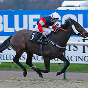 Maison Brillet and Seb Sanders winning the 4.40 race