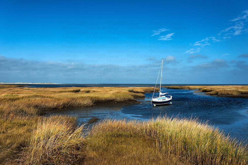 Sailboat anchored in salt marsh, Wharf Lane, Yarmouthport, Cape Cod, Massachusetts, USA