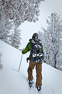 A young man clibming up Angle Mountain at Togwotee Pass, Bridger Teton National Forest, Wyoming with their ski in snow.  Snow coated trees in the background.  Model Released #0012010