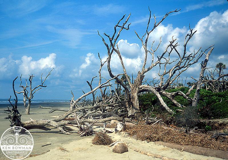 Boneyard Beach on Bull Island.
