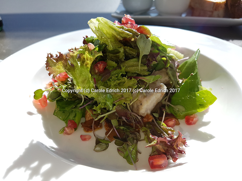 Fresh fish salad with pomegranate and mixed leaves at Cuit, Nakar Hotel. (c) Carole Edrich 2017
