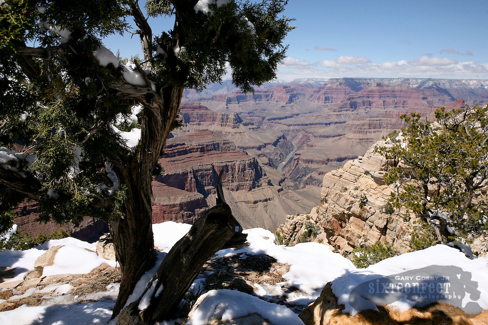 Photo by Gary Cosby Jr.  ..A late snowfall clings to the South Rim of the Grand Canyon in northern Arizona.