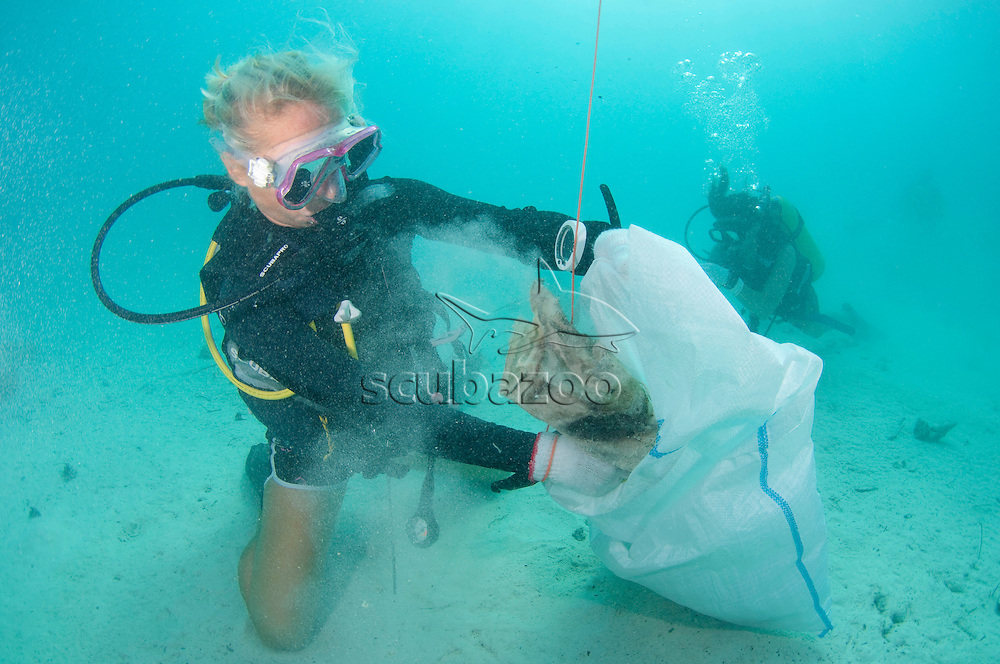 Scuba diver, Underwater clean up environmental action, Rasdhoo Atoll, North Male, Maldives