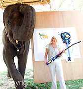 """Jaab, an elephant at the Elephant Life Experience (ELE) north of Chiang Mai, celebrates during a press conference with Wendy Dio, former wife of legendary Black Sabbath guitarist Ronny Dio painting a guitar at the camp as part of a joint effort to raise funds for cancer research and elephant conservation. The elephants at the camp will paint guitars by famous musicians, which will then be sold at a New York auction house. Ronny Dio died last year from stomach cancer and so his wdiow Wendy is raising money in an appeal called the """"Stand Up and Shout Cancer Fund."""""""