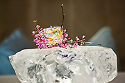 One of the new items on the menu is Purple Shiso tea, Red Bud flowers, ice fish wafer and miso atop a block of ice at Alinea, an upscale restaurant which underwent a total gut renovation in the Lincoln Park neighborhood of Chicago, Ill., on Thursday, April 28, 2016. Nathan Weber for the New York Times