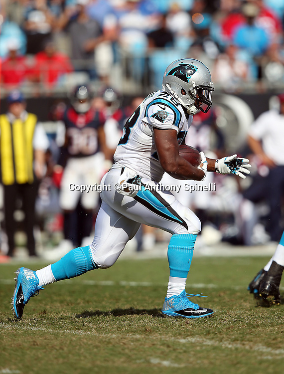 Carolina Panthers running back Jonathan Stewart (28) runs the ball during the 2015 NFL week 2 regular season football game against the Houston Texans on Sunday, Sept. 20, 2015 in Charlotte, N.C. The Panthers won the game 24-17. (©Paul Anthony Spinelli)