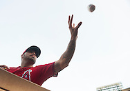The Angels' Hector Santiago signs baseballs before the start of the Halos' game against the Kansas City Royals Saturday night at Angel Stadium.<br /> <br /> ///ADDITIONAL INFO:   <br /> <br /> angels.0412.kjs  ---  Photo by KEVIN SULLIVAN / Orange County Register  --  4/11/15<br /> <br /> The Los Angeles Angels of Anaheim take on the Kansas City Royals at Angel Stadium Saturday. <br /> <br /> 4/11/15