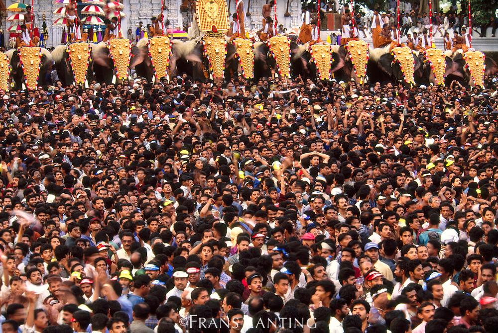 Puram elephant festival, Trissur, Kerala, India
