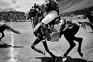 Polotournament at Shandur Pass in Pakistan. The horses are fiery.<br /> The horses are breed especially for the game of polo and very valuable.