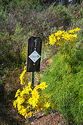 Interpretive marker on the Pelican Bay trail, Santa Cruz Island, Channel Islands National Park, California USA