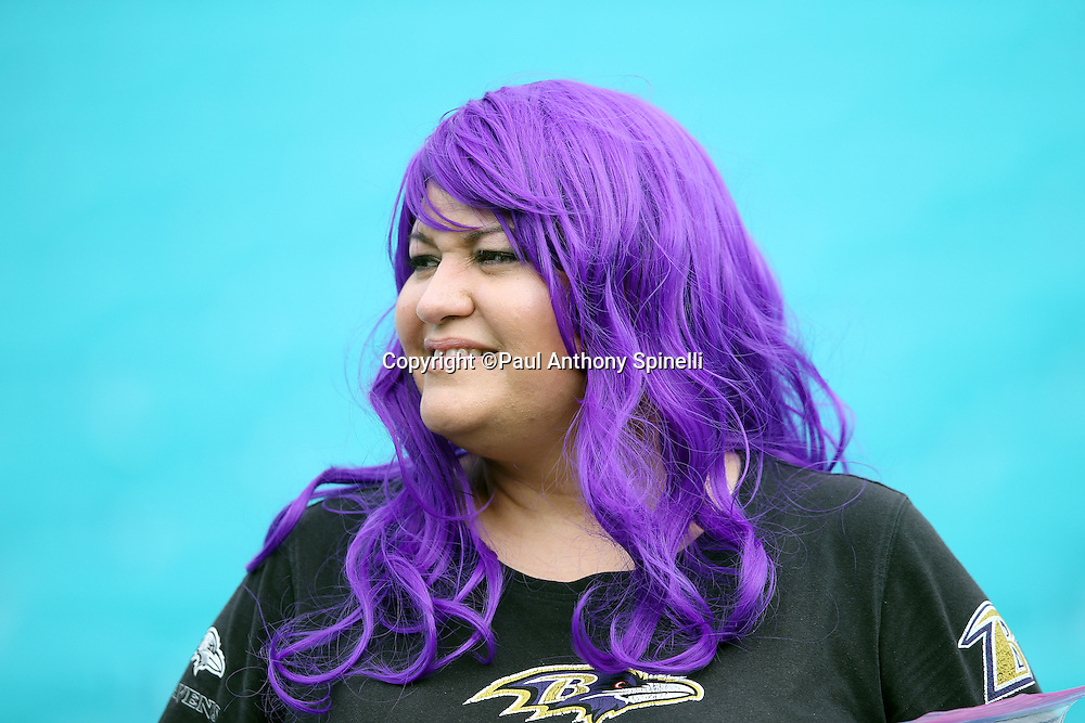 A Baltimore Ravens fan wears a team jersey with purple hair during the Baltimore Ravens 2015 week 13 regular season NFL football game against the Miami Dolphins on Sunday, Dec. 6, 2015 in Miami Gardens, Fla. The Dolphins won the game 15-13. (©Paul Anthony Spinelli)