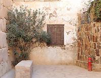 Den brennende busken og et brannslukkningsapparat i St. Katarinaklosteret, Sinai
