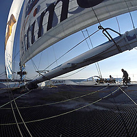 THE RACE CLUB MED <br />