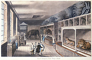 Royal Menagerie, Exeter Change, Strand, London', c1820. Edward Cross kept his menagerie here until  Exeter Change was demolished in 1829 and he moved it to the Surrey Gardens, Walworth c1830. Animals in the cramped cages include an elephant, lion, tiger, apes/monkeys and parrots. In the background visitors are being shown exhibits by a keeper, while in the foreground a family party is looking round.  Aquatint after Thomas Rowlandson (1756-1827).