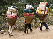 Porters, loaded with vegetables and supplies, rest their bamboo baskets on T-shaped walking sticks on the way to market in Namche Bazaar, Sagarmatha National Park, Nepal. Sagarmatha National Park (created 1976) was honored as a UNESCO World Heritage Site in 1979.