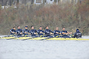 Putney, GREAT BRITAIN,    Bear, left to right, Bow. Tim FARQUHARSON,  2. Ben ROSENBERGER, 3. Mike VALLI. 4. Alex HEARNE, 6 Tom SOLESBURY, 7 George BRIDGEWATER, Stroke, Ante KUSURI and Cox Adam BARHAMAND.during the 2008 Varsity/Oxford University [OUBC] Trial Eights, raced over the championship course. Putney to Mortlake, on the River Thames. Thurs. 11.08.2008 [Mandatory Credit, Peter Spurrier/Intersport-images] Varsity Boat Race, Rowing Course: River Thames, Championship course, Putney to Mortlake 4.25 Miles,