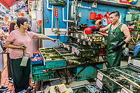 Causeway Bay, Hong Kong, China- June 4, 2014: people shopping at the seafood market