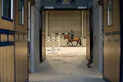 Wathlet Gregory, BEL<br /> Stal Wathelet - Clavier 2016<br /> © Dirk Caremans<br /> 19/12/16