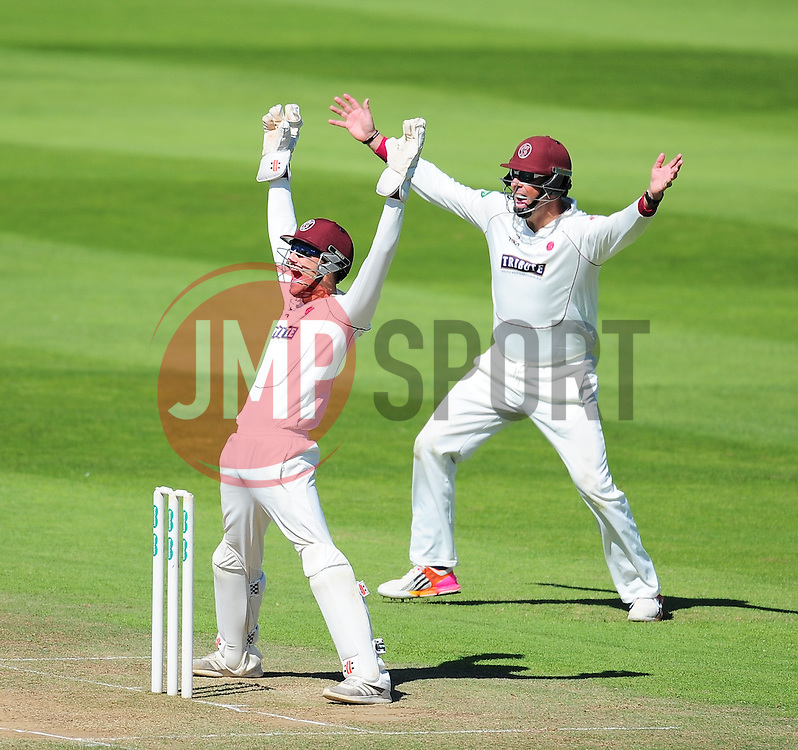 Ryan Davies and Marcus Trescothick  of Somerset appeal for the wicket of Graham Onions.  - Mandatory by-line: Alex Davidson/JMP - 06/08/2016 - CRICKET - The Cooper Associates County Ground - Taunton, United Kingdom - Somerset v Durham - County Championship - Day 3
