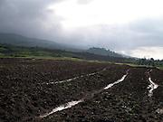 On the road to the Virunga National Park from Ruhengeri. Rwanda 2006