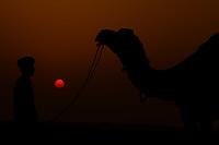 man looking at his camel during sunset khuri dunes in thar desert near jaisalmer in rajasthan state in india