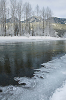 Ice along the Birkenhead river near Pemberton, Coast Mountains British Columbia