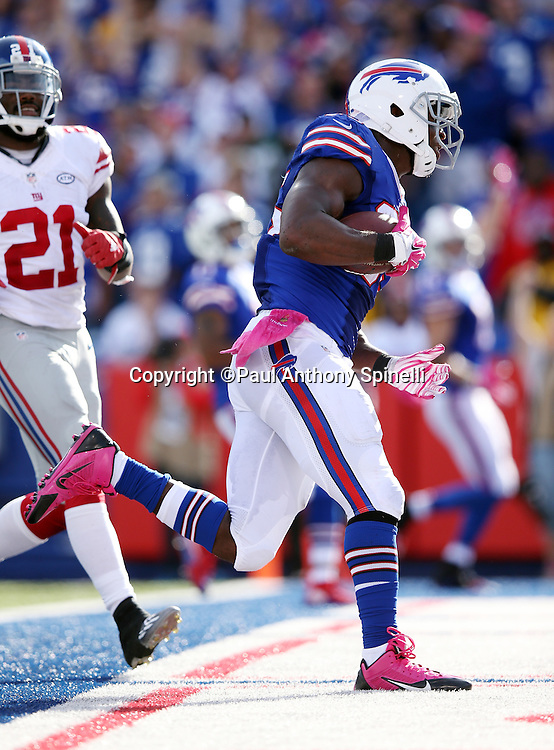 Buffalo Bills tight end Charles Clay (85) jumps and catches a touchdown pass called back due to a penalty with one minute left in the fourth quarter during the 2015 NFL week 4 regular season football game against the New York Giants on Sunday, Oct. 4, 2015 in Orchard Park, N.Y. The Giants won the game 24-10. (©Paul Anthony Spinelli)