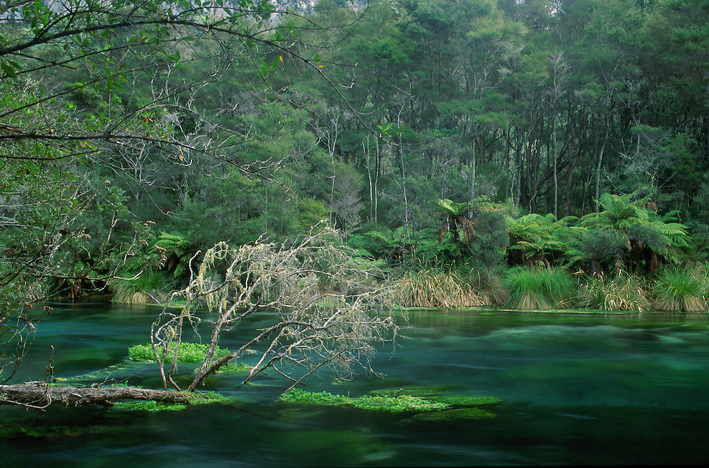 Tarawera River near Kawerau