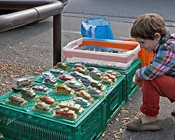 A young boy examines a display of minature cars during a Sunday flea and antiques market in L'Isle-sur-la-Sorgue. Considering its more than 300 permanent antique shops and decorator establishments, this town in Provence is the second largest (after Paris) antiques center in France.   Vintage clothing, toys, and antiques share sidewalk space with amazing food and working artists during the year-round Sunday flea markets for which the town of L'Isle-sur-la-Sorgue also is famous.