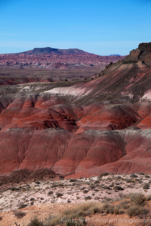 North America, USA, Arizona, Painted Desert. Pintado Point at Painted Desert, part of the Pterified Forest National Park.