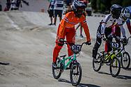 Women Elite #388 (BAAUW Judy) NED at the 2018 UCI BMX World Championships in Baku, Azerbaijan.