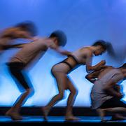 Dance Fine Art Series by Marina Chen