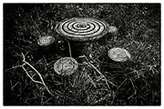 """Spiral motifs painted on concrete cast seating, in the grounds of the Pha Koeng Buddhist temple, Chaiyaphum Province, Northeast Thailand, 2016. From the series: Pha Koeng"""" (2011-2017)."""