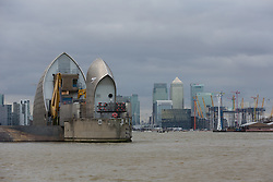 © Licensed to London News Pictures. 13/01/2017. LONDON, UK.  <br /> Alpha and Bravo gates are closed today on the Thames Barrier. Alpha gate has been closed in preparation, to reduce manpower required if a full closure of the Thames Barrier is required tonight to manage high tide and prevent flooding to London.  Note that Bravo gate has been closed this week for maintenance. Photo credit: Vickie Flores/LNP